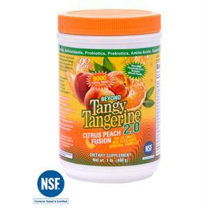0006163_btt-20-citrus-peach-fusion-480-g-canister_300